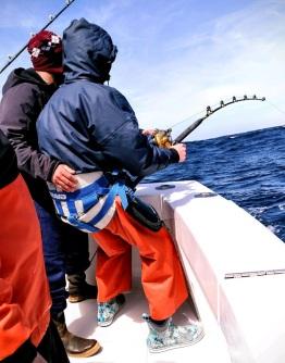 tuna pic 2