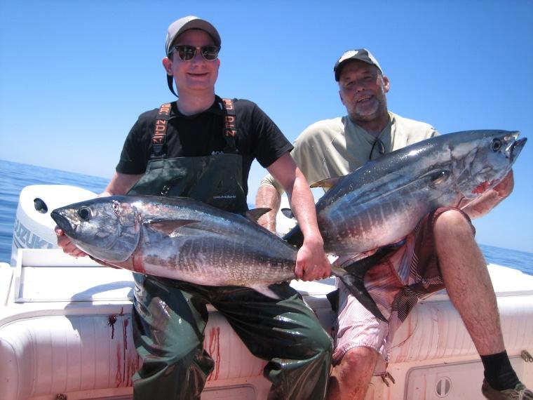Hi Flier tuna