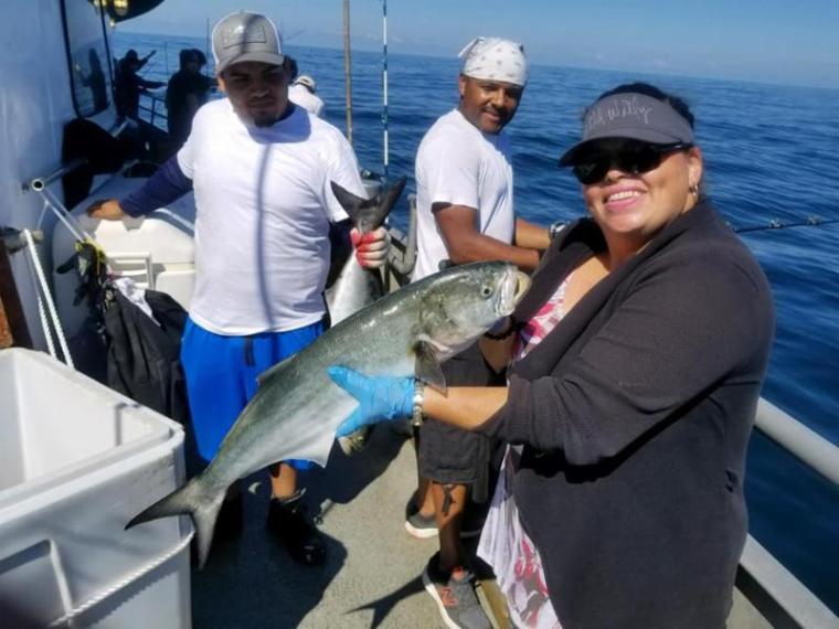 bluefish on the Jamaica