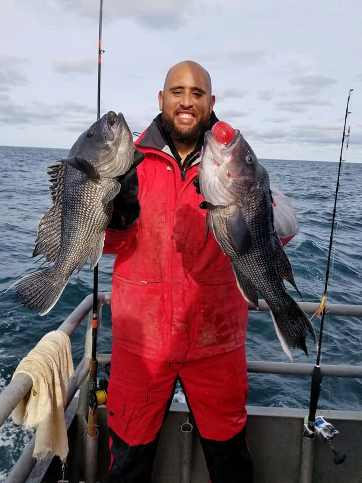 Pair of Jamaica sea bass