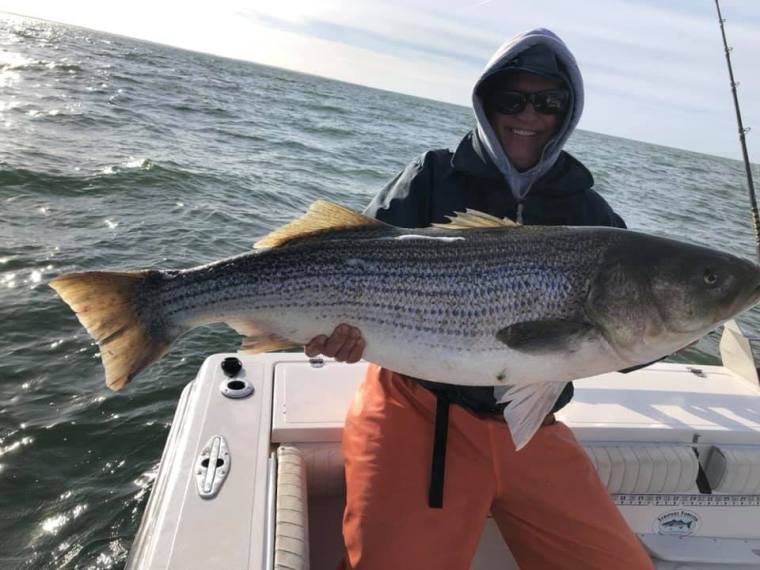 Cape Charles bass